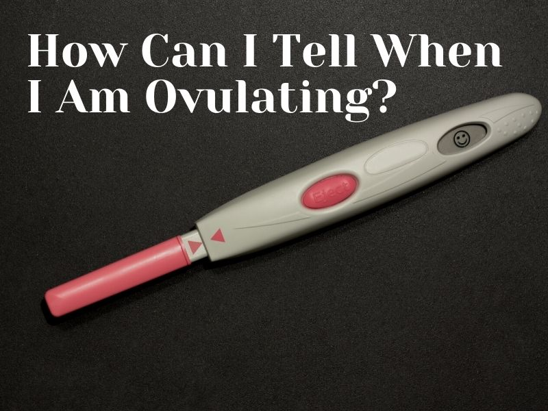 How Can I Tell When I Am Ovulating 7